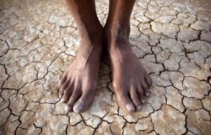 tierra agua y alimentos